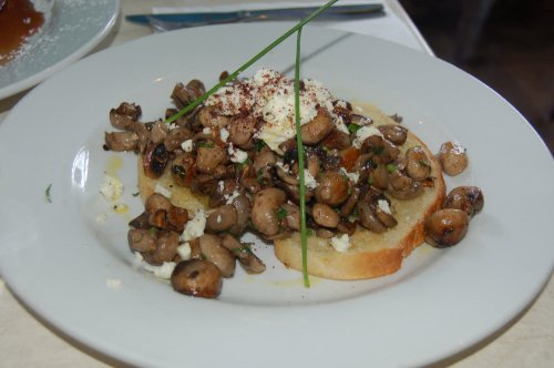 Herbed field mushrooms on a garlic bruschetta