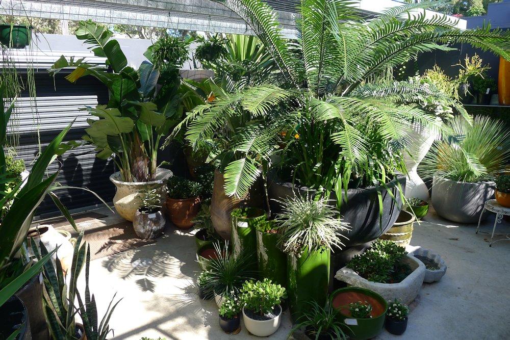 courtyard - Garden Life