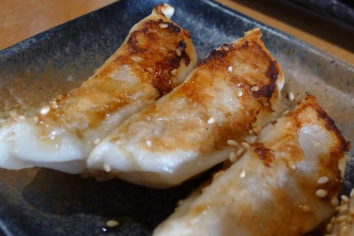 Pan fried chicken gyoza