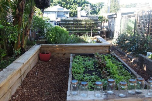 Chicken coop and edible garden