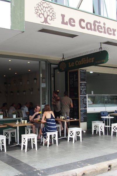 Le Caféier