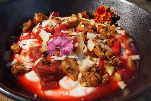 Acre yoghurt bowl